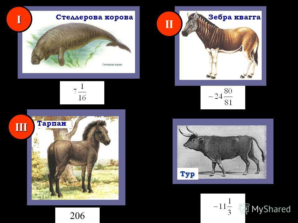 Зебра квагга Тарпан 206Тур Стеллерова корова I II III