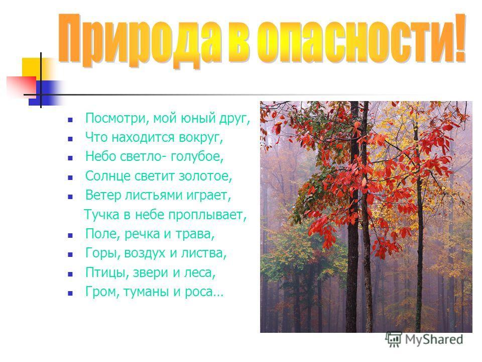 Посмотри, мой юный друг, Что находится вокруг, Небо светло- голубое, Солнце светит золотое, Ветер листьями играет, Тучка в небе проплывает, Поле, речка и трава, Горы, воздух и листва, Птицы, звери и леса, Гром, туманы и роса…