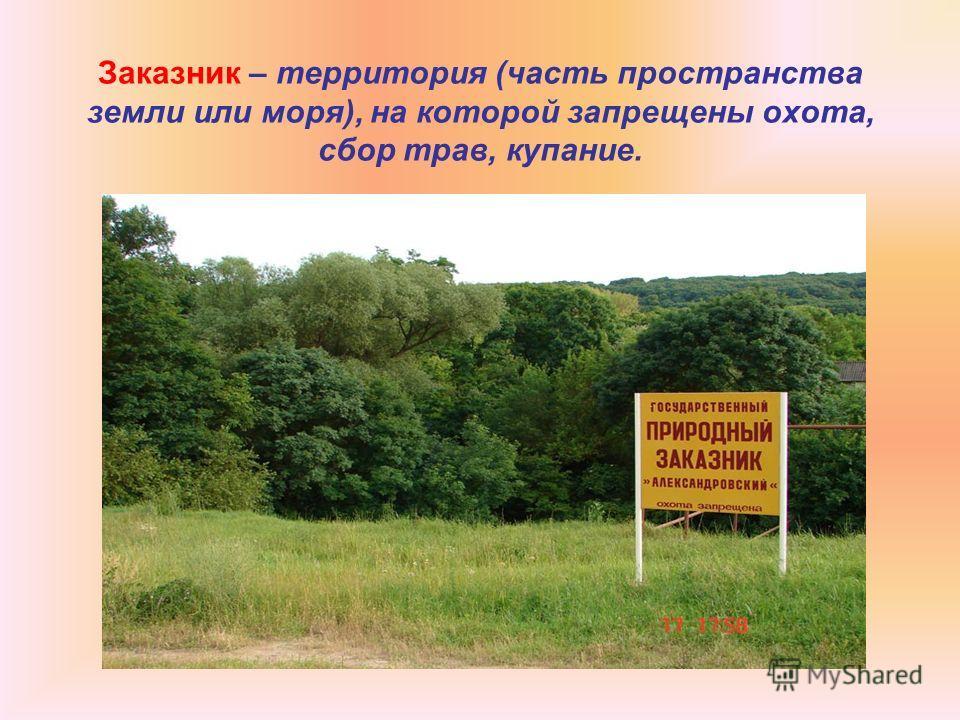 Заказник – территория (часть пространства земли или моря), на которой запрещены охота, сбор трав, купание.