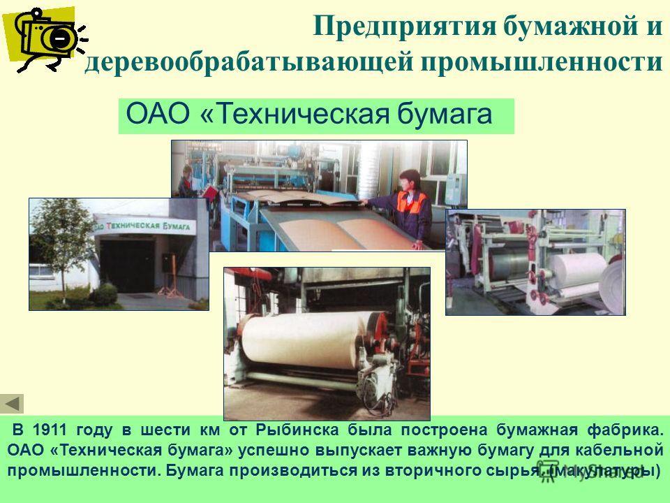 Предприятия бумажной и деревообрабатывающей промышленности ОАО «Техническая бумага В 1911 году в шести км от Рыбинска была построена бумажная фабрика. ОАО «Техническая бумага» успешно выпускает важную бумагу для кабельной промышленности. Бумага произ