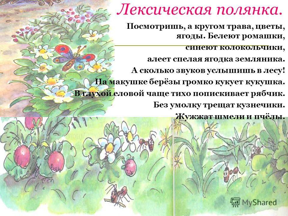 Лексическая полянка. Посмотришь, а кругом трава, цветы, ягоды. Белеют ромашки, синеют колокольчики, алеет спелая ягодка земляника. А сколько звуков услышишь в лесу! На макушке берёзы громко кукует кукушка. В глухой еловой чаще тихо попискивает рябчик
