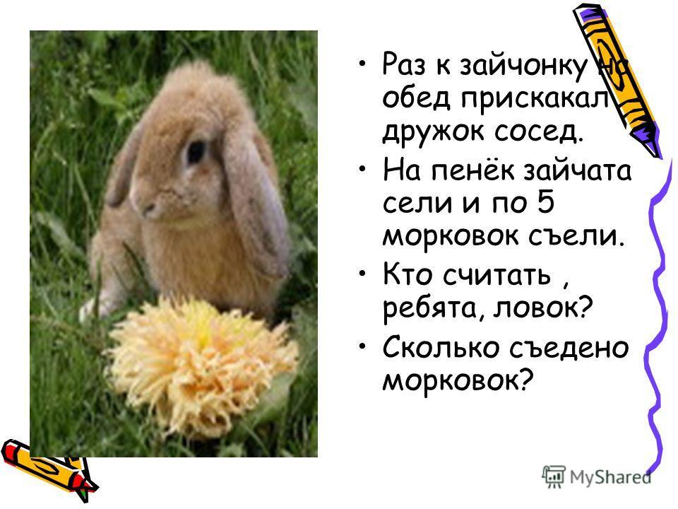 Раз к зайчонку на обед прискакал дружок сосед. На пенёк зайчата сели и по 5 морковок съели. Кто считать, ребята, ловок? Сколько съедено морковок?