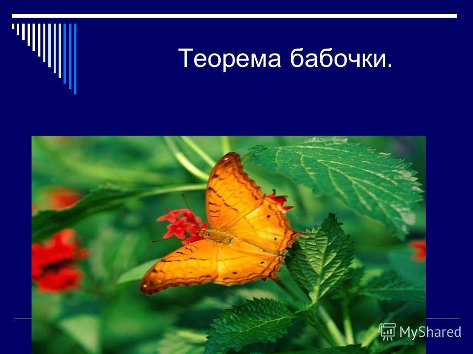 Теорема бабочки.