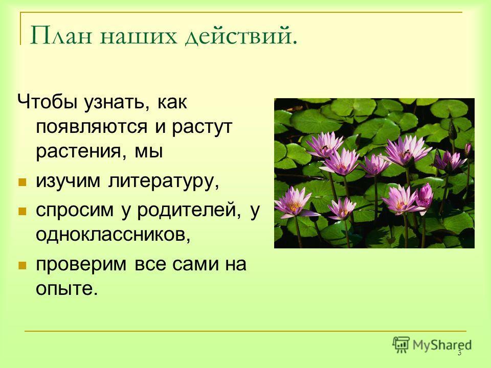 3 План наших действий. Чтобы узнать, как появляются и растут растения, мы изучим литературу, спросим у родителей, у одноклассников, проверим все сами на опыте.