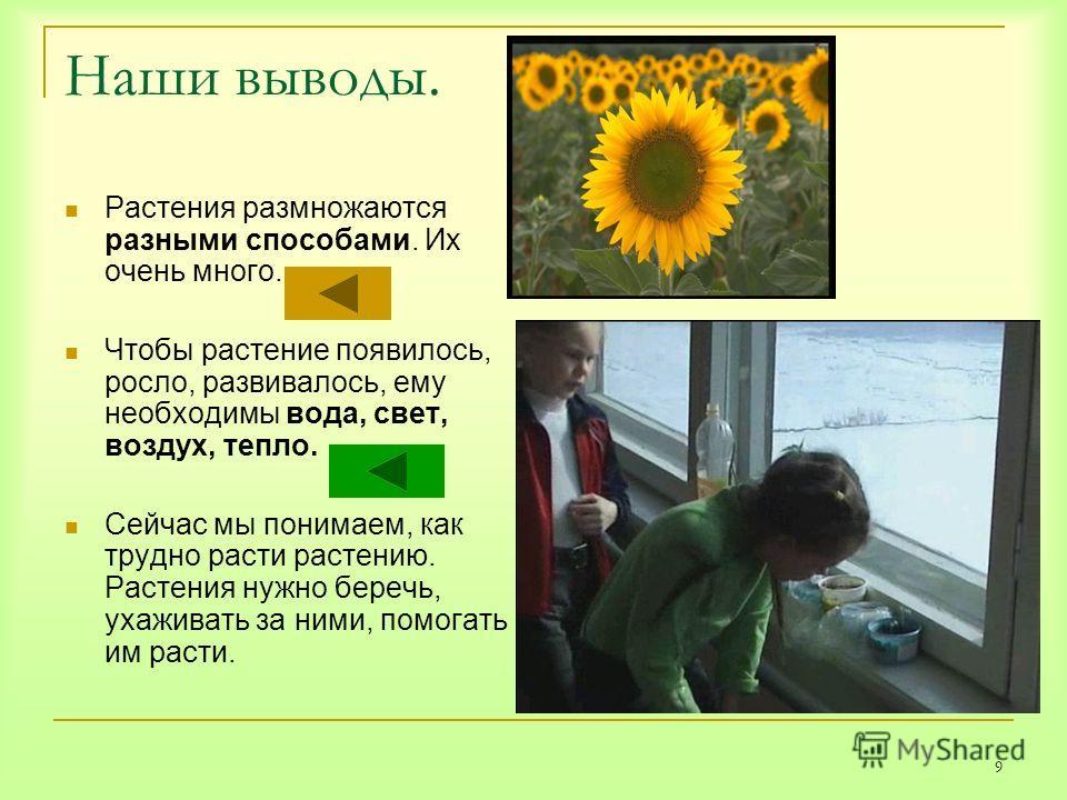 9 Наши выводы. Растения размножаются разными способами. Их очень много. Чтобы растение появилось, росло, развивалось, ему необходимы вода, свет, воздух, тепло. Сейчас мы понимаем, как трудно расти растению. Растения нужно беречь, ухаживать за ними, п