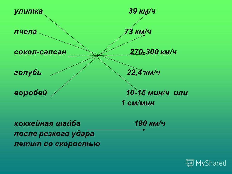 улитка 39 км/ч пчела 73 км/ч сокол-сапсан 270-300 км/ч голубь 22,4 км/ч воробей 10-15 мин/ч или 1 см/мин хоккейная шайба 190 км/ч после резкого удара летит со скоростью