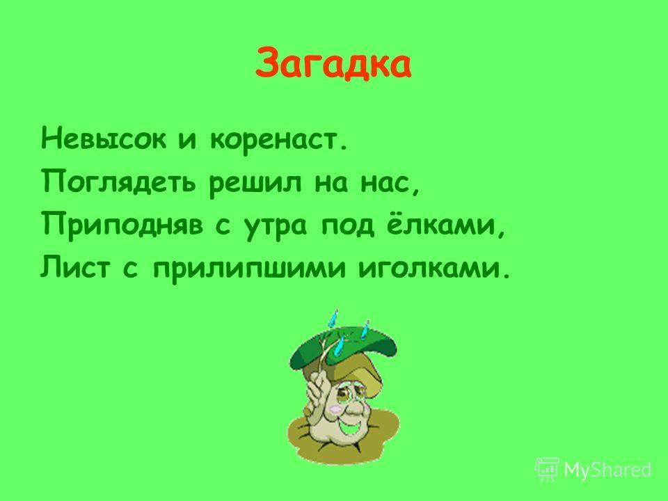 Велькина Юлия Николаевна Персональная карточка 220-770-983