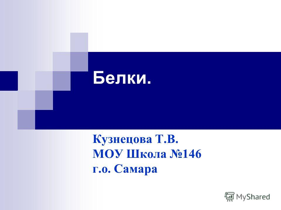 Белки. Кузнецова Т.В. МОУ Школа 146 г.о. Самара