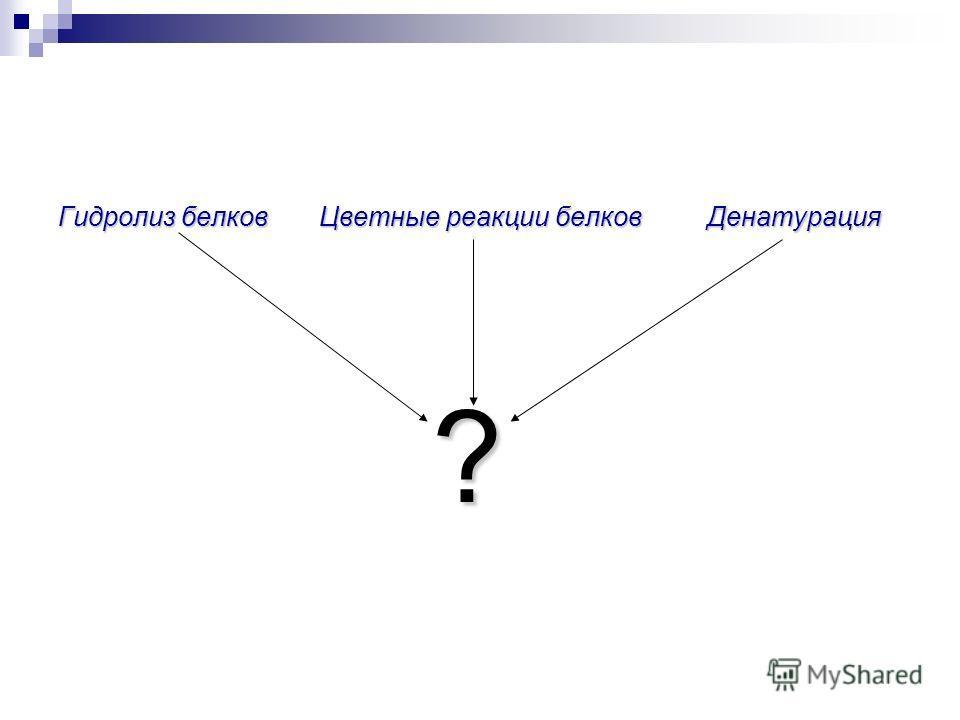 Гидролиз белков Цветные реакции белков Денатурация ?