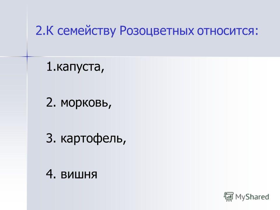 2.К семейству Розоцветных относится: 1.капуста, 2. морковь, 3. картофель, 4. вишня