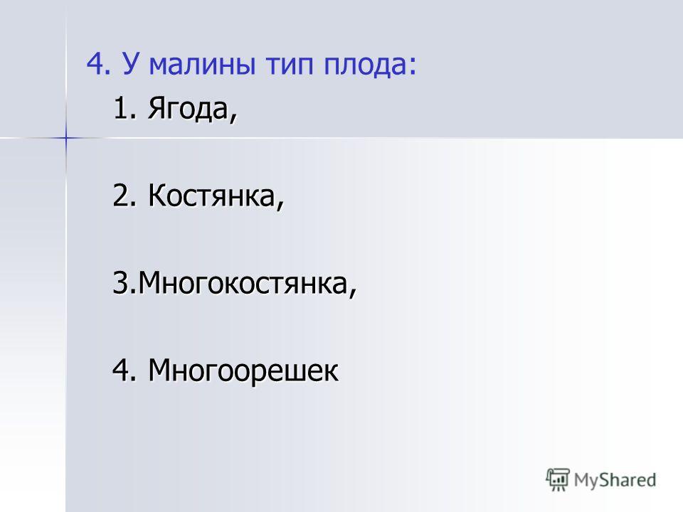 4. У малины тип плода: 1. Ягода, 2. Костянка, 3.Многокостянка, 4. Многоорешек