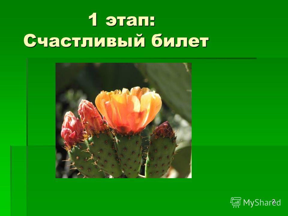2 1 этап: Счастливый билет 1 этап: Счастливый билет