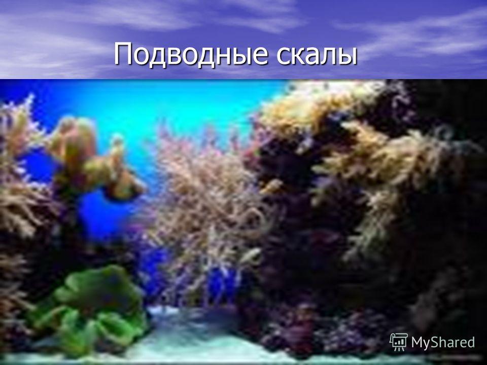 Подводные скалы Подводные скалы