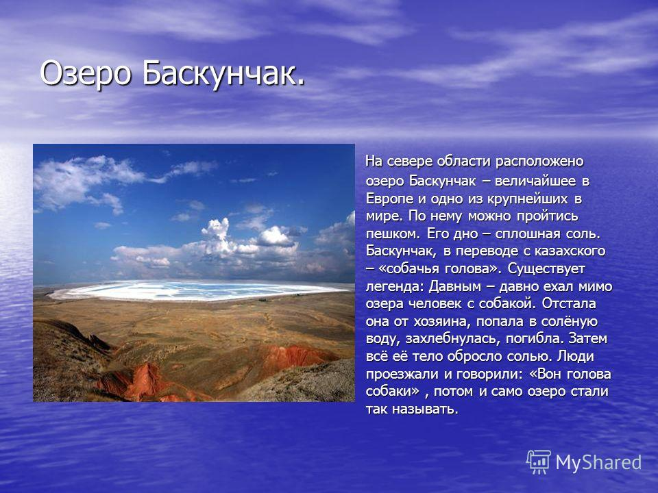 Озеро Баскунчак. На севере области расположено озеро Баскунчак – величайшее в Европе и одно из крупнейших в мире. По нему можно пройтись пешком. Его дно – сплошная соль. Баскунчак, в переводе с казахского – «собачья голова». Существует легенда: Давны