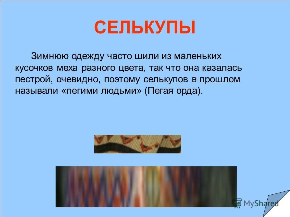 СЕЛЬКУПЫ Зимнюю одежду часто шили из маленьких кусочков меха разного цвета, так что она казалась пестрой, очевидно, поэтому селькупов в прошлом называли «пегими людьми» (Пегая орда).