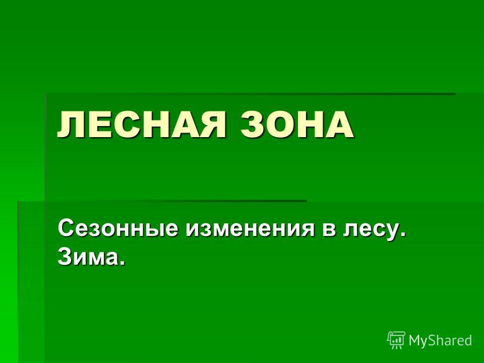 ЛЕСНАЯ ЗОНА Сезонные изменения в лесу. Зима.