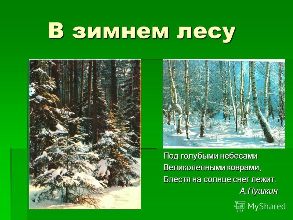 В зимнем лесу В зимнем лесу Под голубыми небесами Великолепными коврами, Блестя на солнце снег лежит. А.Пушкин А.Пушкин