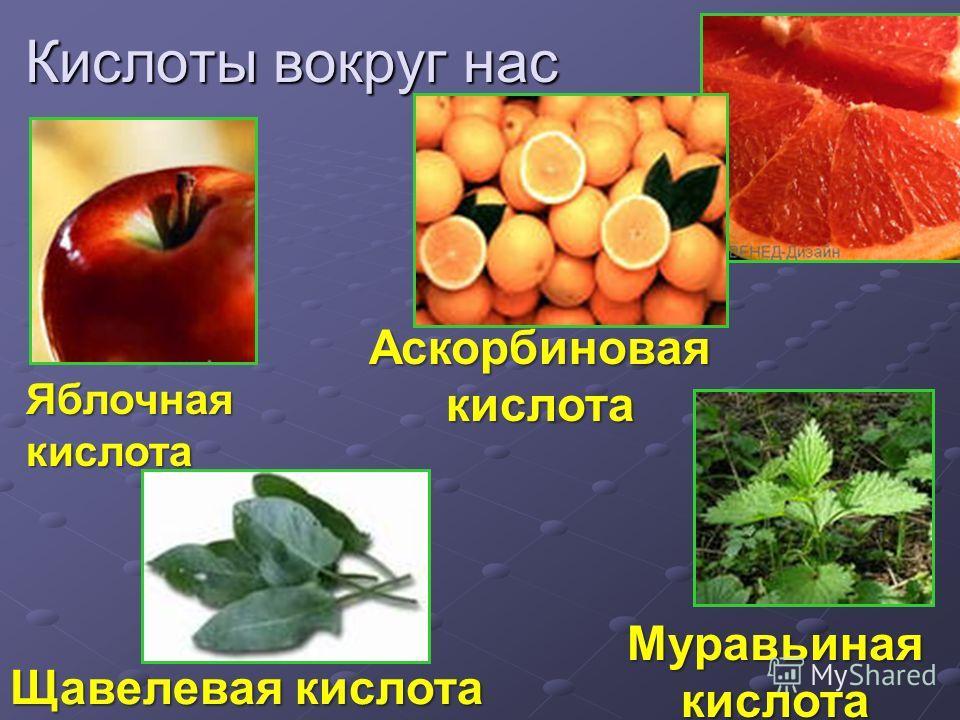 Яблочная кислота Щавелевая кислота Аскорбиновая кислота Муравьиная кислота Кислоты вокруг нас