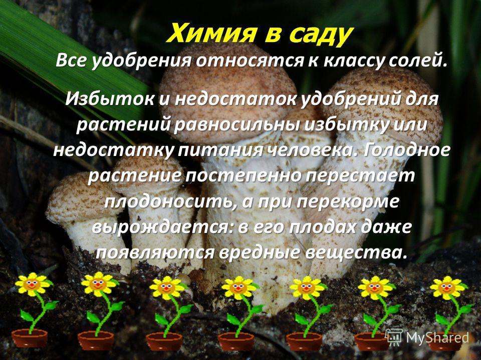 Химия в саду Все удобрения относятся к классу солей. Избыток и недостаток удобрений для растений равносильны избытку или недостатку питания человека. Голодное растение постепенно перестает плодоносить, а при перекорме вырождается: в его плодах даже п