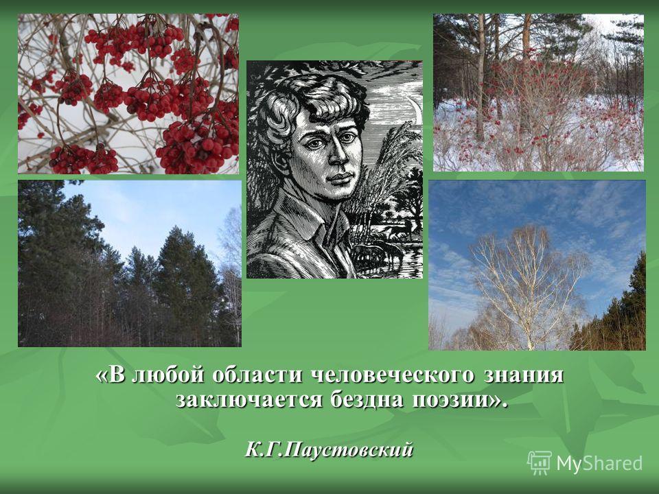 «В любой области человеческого знания заключается бездна поэзии». К.Г.Паустовский