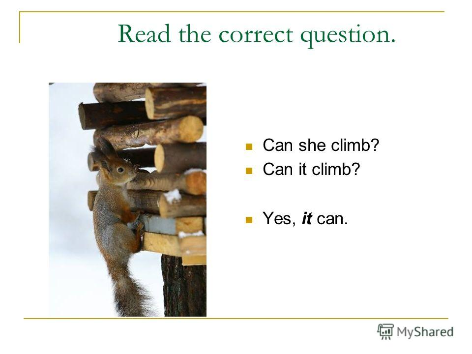 Read the correct question. Can she climb? Can it climb? Yes, it can.
