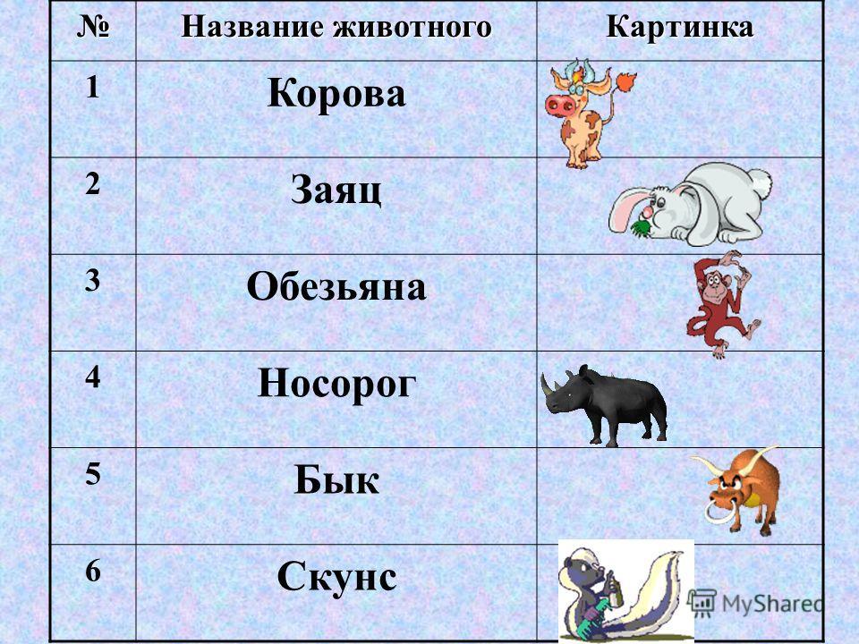 Название животного Картинка 1 Корова 2 Заяц 3 Обезьяна 4 Носорог 5 Бык 6 Скунс