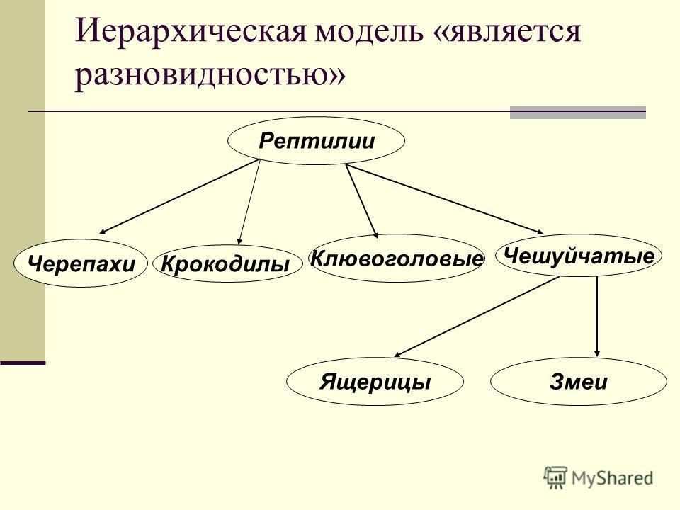 Иерархическая модель «является разновидностью» Черепахи Чешуйчатые Крокодилы Клювоголовые Рептилии ЯщерицыЗмеи