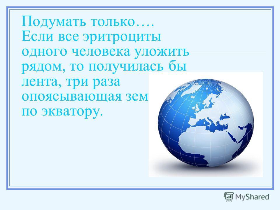Подумать только…. Если все эритроциты одного человека уложить рядом, то получилась бы лента, три раза опоясывающая земной шар по экватору.