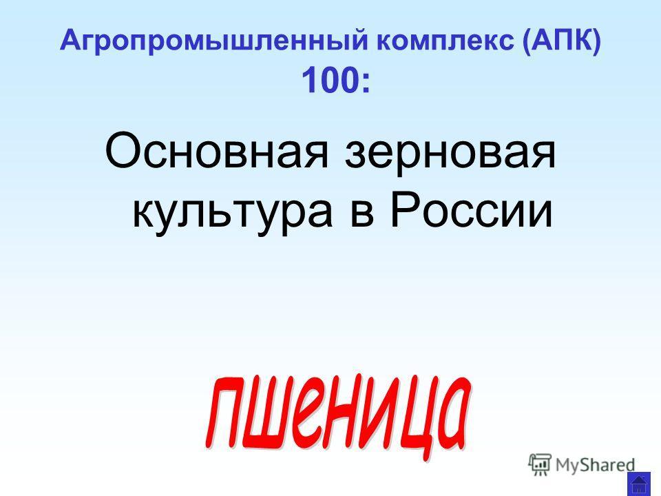 Агропромышленный комплекс (АПК) 100: Основная зерновая культура в России