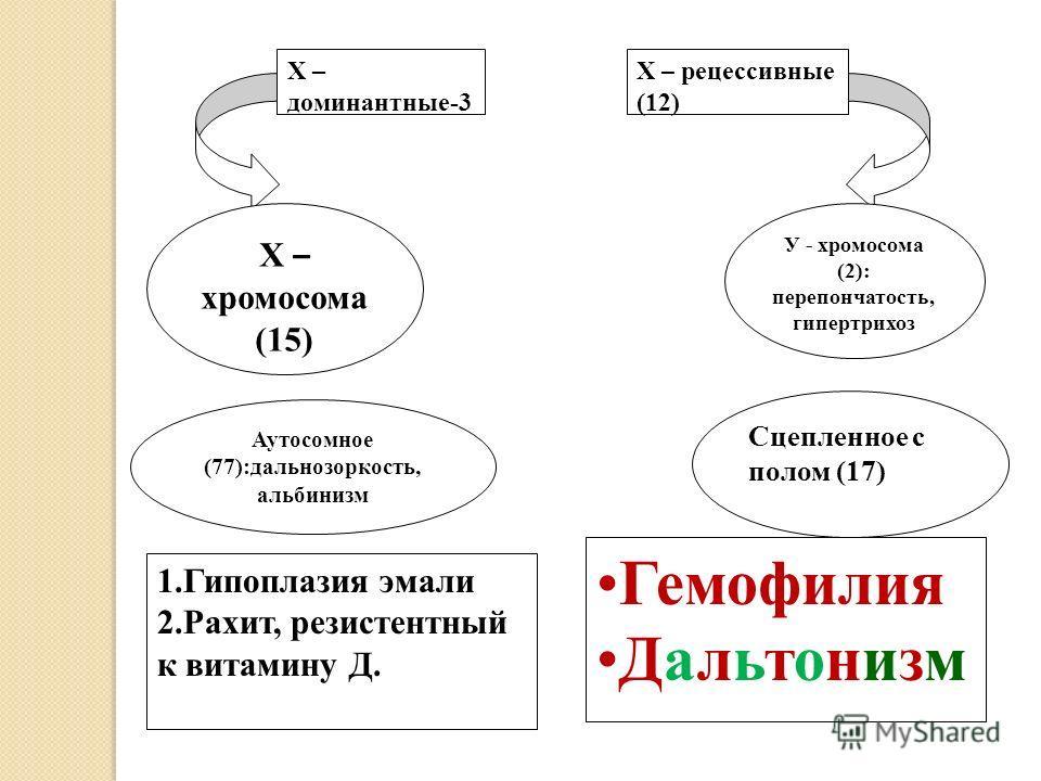 Аутосомное (77):дальнозоркость, альбинизм Сцепленное с полом (17) Х – хромосома (15) У - хромосома (2): перепончатость, гипертрихоз Х – доминантные-3 1.Гипоплазия эмали 2.Рахит, резистентный к витамину Д. Х – рецессивные (12) Гемофилия Дальтонизм