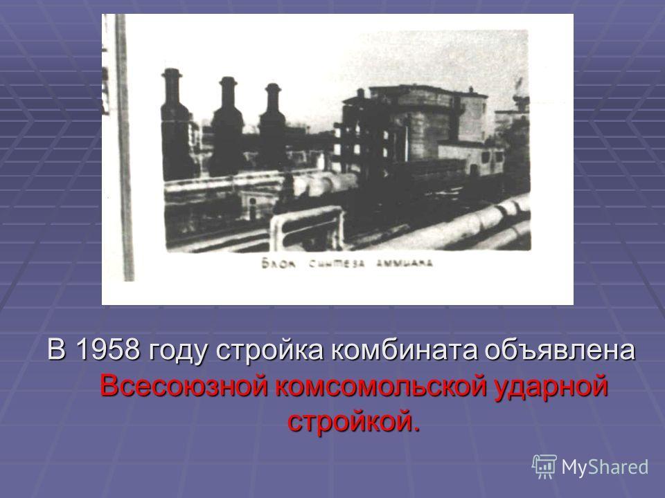 В 1958 году стройка комбината объявлена Всесоюзной комсомольской ударной стройкой.