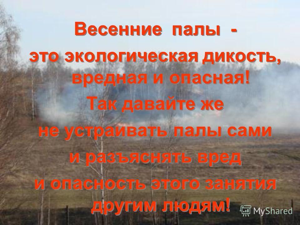 Весенние палы - это экологическая дикость, вредная и опасная! Так давайте же не устраивать палы сами и разъяснять вред и опасность этого занятия другим людям! Весенние палы - это экологическая дикость, вредная и опасная! Так давайте же не устраивать