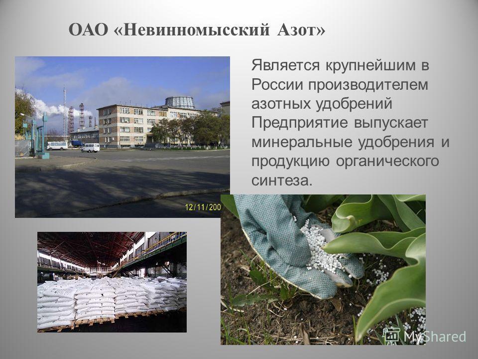 ОАО «Невинномысский Азот» Является крупнейшим в России производителем азотных удобрений Предприятие выпускает минеральные удобрения и продукцию органического синтеза.