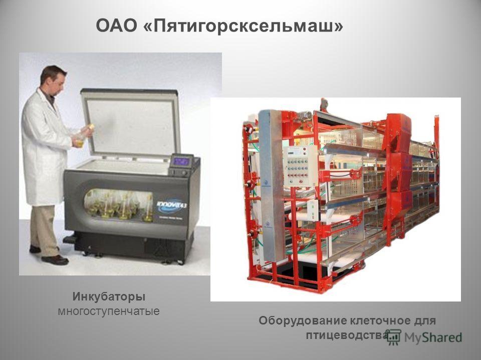Инкубаторы многоступенчатые Оборудование клеточное для птицеводства ОАО «Пятигорсксельмаш»
