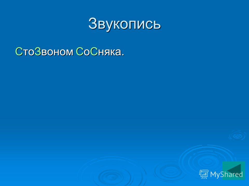 Звукопись СтоЗвоном СоСняка.