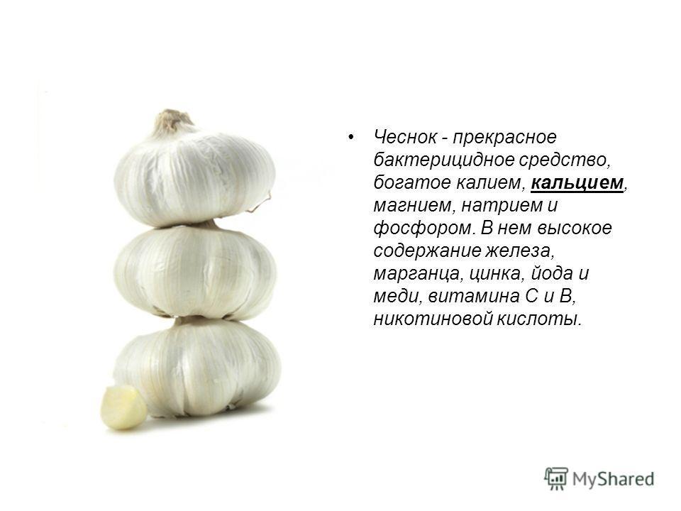 Чеснок - прекрасное бактерицидное средство, богатое калием, кальцием, магнием, натрием и фосфором. В нем высокое содержание железа, марганца, цинка, йода и меди, витамина С и В, никотиновой кислоты.