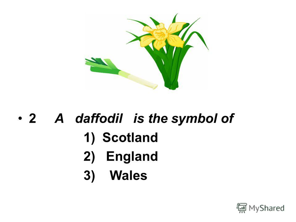 2 A daffodil is the symbol of 1) Scotland 2) England 3) Wales