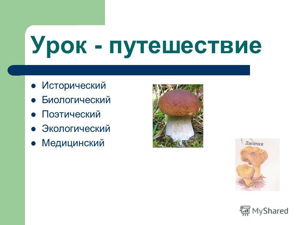 Урок - путешествие Исторический Биологический Поэтический Экологический Медицинский
