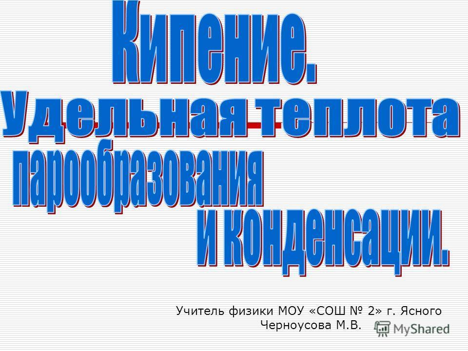 Учитель физики МОУ «СОШ 2» г. Ясного Черноусова М.В.