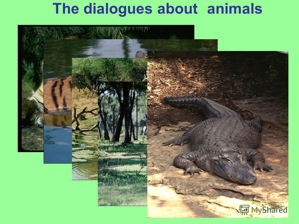 The dialogues about animals