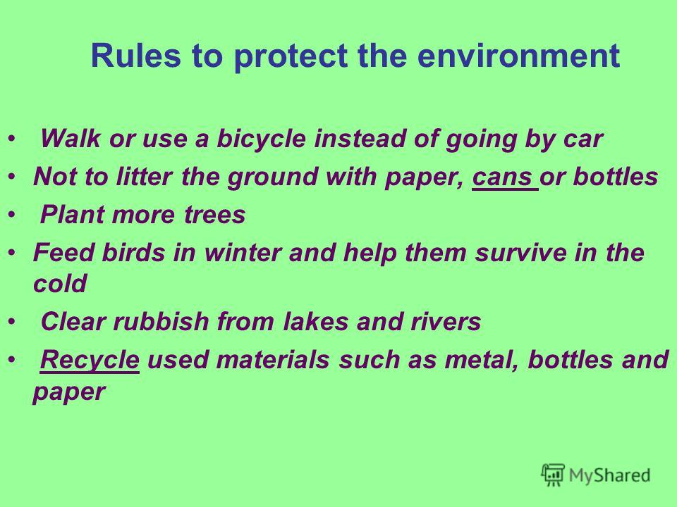 Rules to protect the environment Walk or use a bicycle instead of going by car Not to litter the ground with paper, cans or bottles Plant more trees Feed birds in winter and help them survive in the cold Clear rubbish from lakes and rivers Recycle us