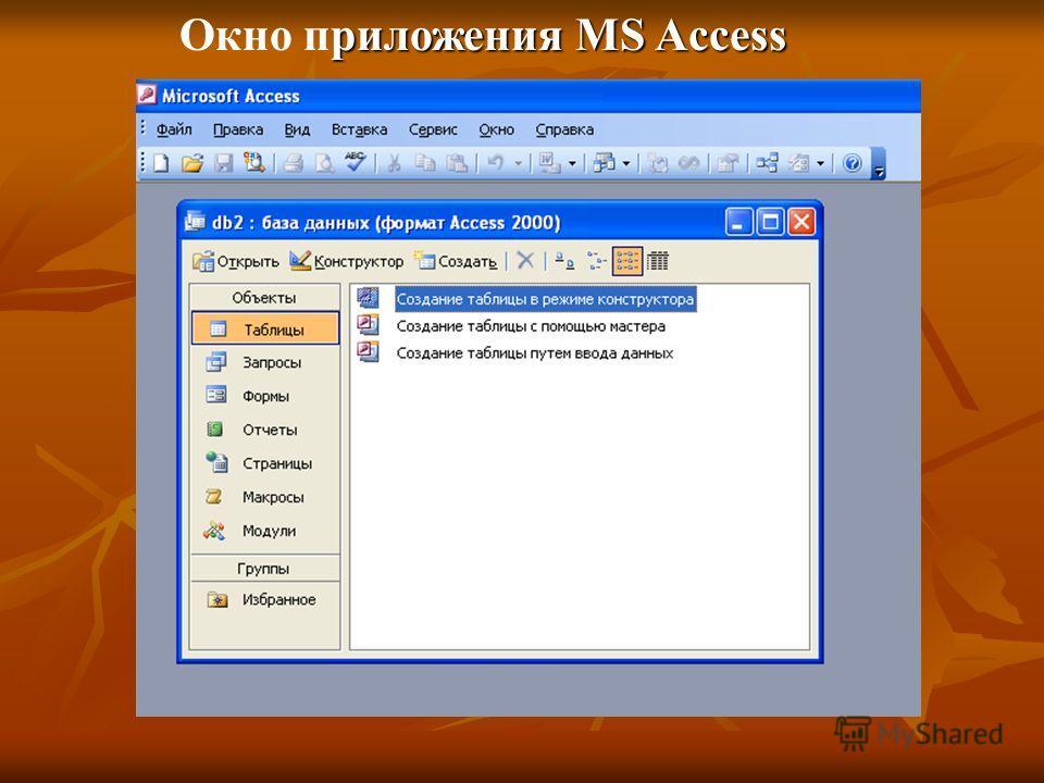 риложения MS Access Окно приложения MS Access