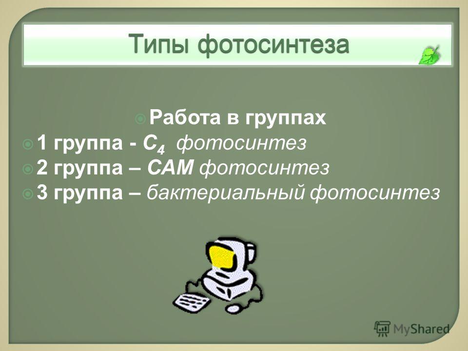Типы фотосинтеза Работа в группах 1 группа - С 4 фотосинтез 2 группа – САМ фотосинтез 3 группа – бактериальный фотосинтез