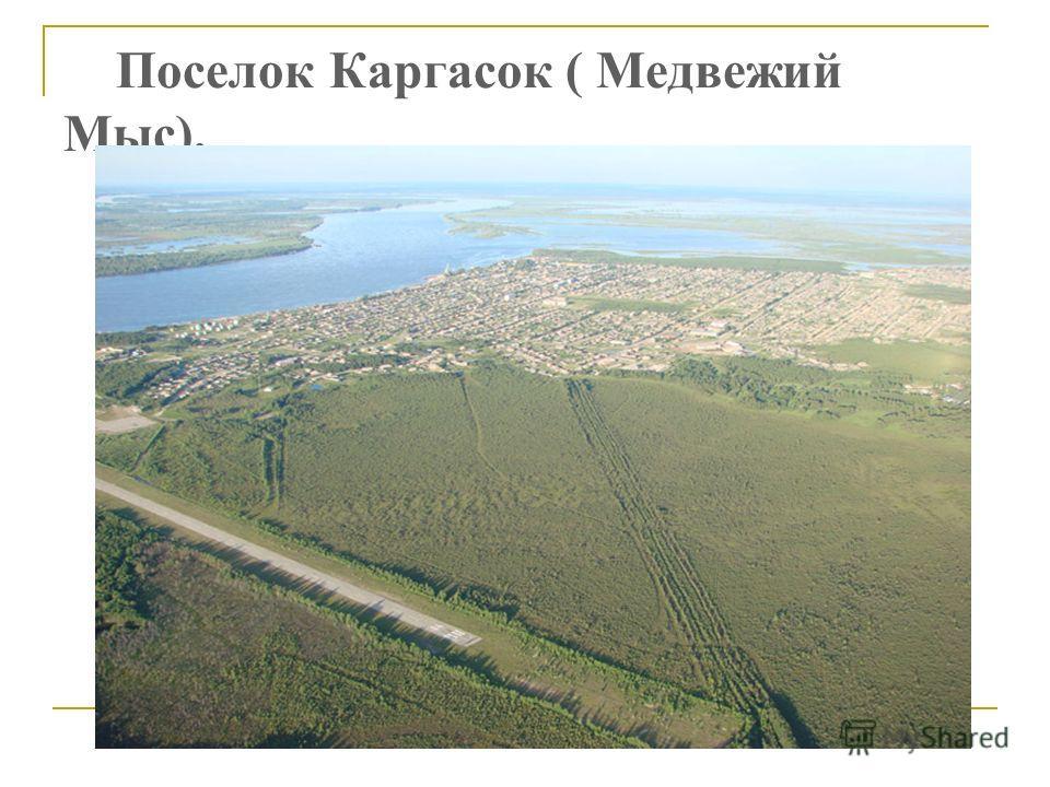 Поселок Каргасок ( Медвежий Мыс).
