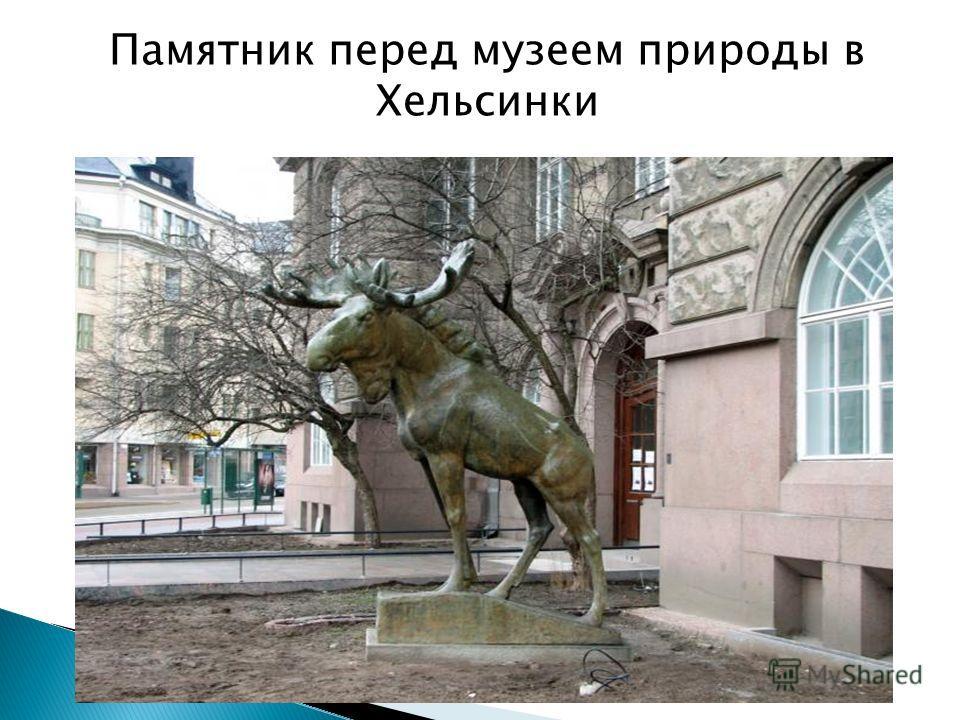 Памятник перед музеем природы в Хельсинки