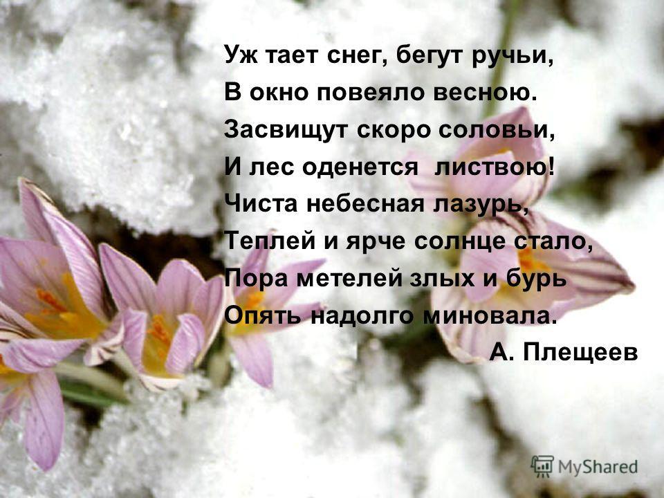 Уж тает снег, бегут ручьи, В окно повеяло весною. Засвищут скоро соловьи, И лес оденется листвою! Чиста небесная лазурь, Теплей и ярче солнце стало, Пора метелей злых и бурь Опять надолго миновала. А. Плещеев