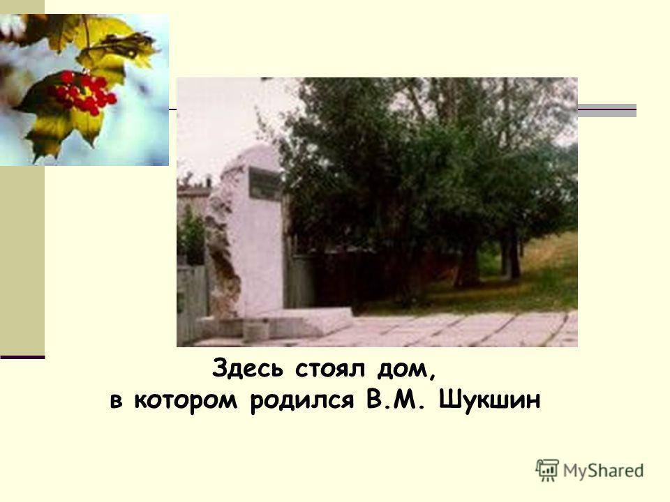 Здесь стоял дом, в котором родился В.М. Шукшин