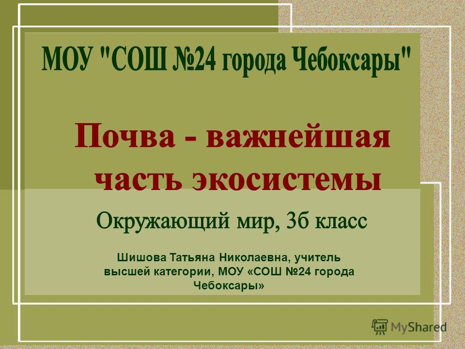 Шишова Татьяна Николаевна, учитель высшей категории, МОУ «СОШ 24 города Чебоксары»