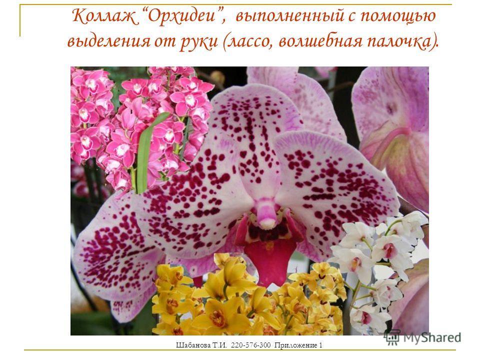Коллаж Орхидеи, выполненный с помощью выделения от руки (лассо, волшебная палочка). Шабанова Т.И. 220-576-300 Приложение 1