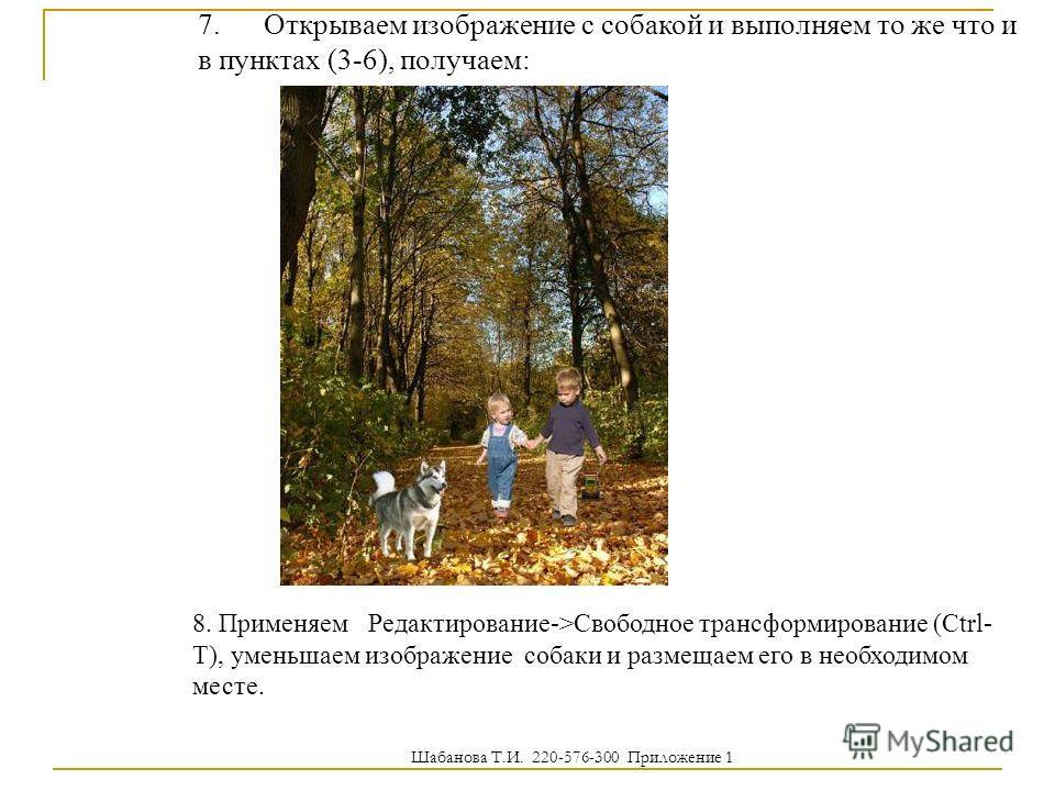 7. Открываем изображение с собакой и выполняем то же что и в пунктах (3-6), получаем: 8. Применяем Редактирование->Свободное трансформирование (Ctrl- T), уменьшаем изображение собаки и размещаем его в необходимом месте. Шабанова Т.И. 220-576-300 Прил